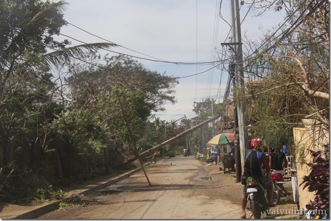 Typhoon Haiyan (39)