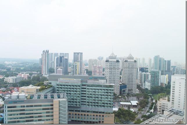 Oasia Hotel Singapore (8)