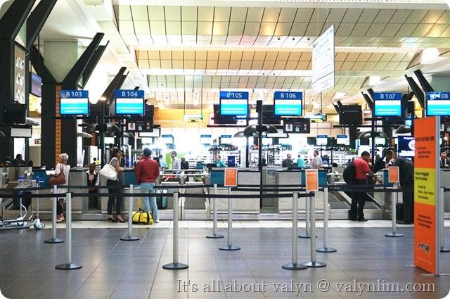 约翰内斯堡奥利弗·坦博国际机场 (2)