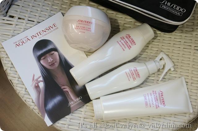 时尚马卡龙头发 twiggy salon (84)