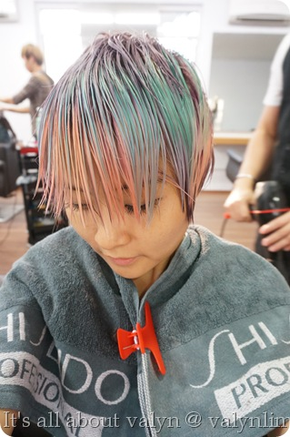 时尚马卡龙头发 twiggy salon (88)