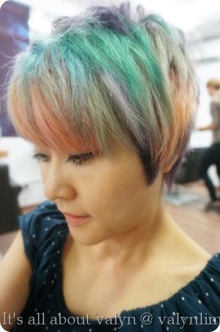 时尚马卡龙头发 twiggy salon (96)