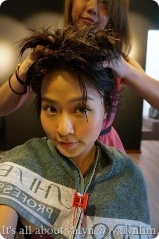 Shiseido排毒净化护理【针对脱发】